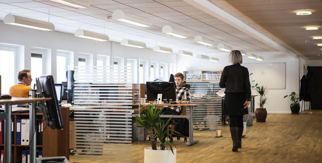 Iluminação correta no escritório aumenta produtividade e sensação de bem-estar